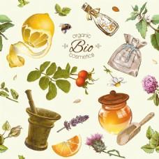 手绘橙子柠檬蜂蜜矢量背景素材