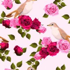 粉色系玫瑰花纹理图案矢量背景