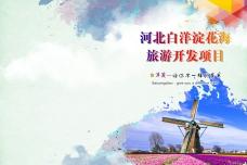 白洋淀画册封面