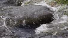 河边水流视频素材