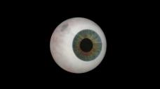 眼球三维动画视频