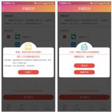 手机网页app移动在线支付反馈弹窗