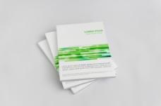 绿色动感线条画册样机