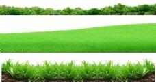 手绘绿草边框元素