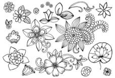 荷叶花朵树叶桂冠矢量插画设计