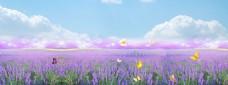 紫色花海banner背景