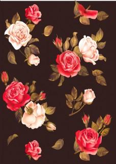 浪漫花朵黑色背景