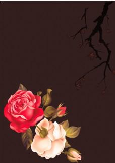浪漫粉色红色月季背景