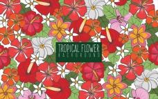 手绘多彩的热带花卉的背景