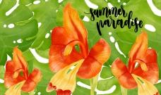 水彩夏日热带花卉的背景