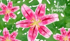 水彩热带花卉的背景