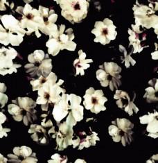 数码印花黑白花背景图