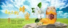 蜂蜜网页banner