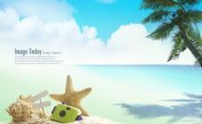 海边沙滩上的海螺和海星