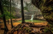 森林 风景图