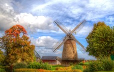 风景图 荷兰风车
