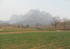 玉寨山春景