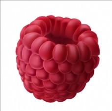 写实风格多汁覆盆子树莓插图