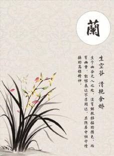 兰花图 封面图 中国风 广告图