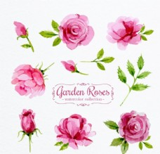 玫瑰花唯美卡片背景