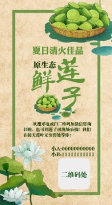 赠送闺蜜的莲子广告模板