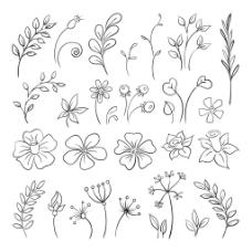 简单线条花朵树叶桂冠矢量插画设计