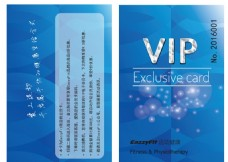 蓝色VIP