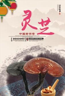 中国风灵芝宣传展板海报