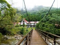 山林中的吊桥