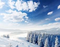 唯美山林雪景