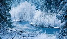 雪后山林美景