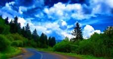 公路旁的山林美景