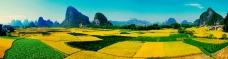 美丽田地山林风景