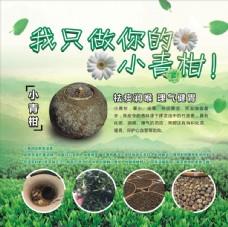 小清新 绿色 茶叶 海报