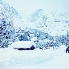 唯美雪山山林美景