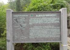 卢崖景区导游示意图