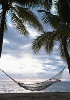 海边椰树上的吊床