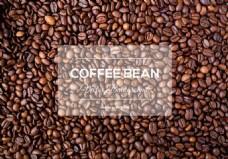 咖啡豆矢量素材