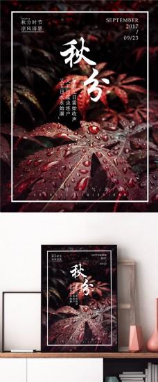 中国传统节日二十四节气秋分微信配图海报