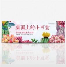 彩色手绘风小清新多肉植物盆栽淘宝banner电商海报