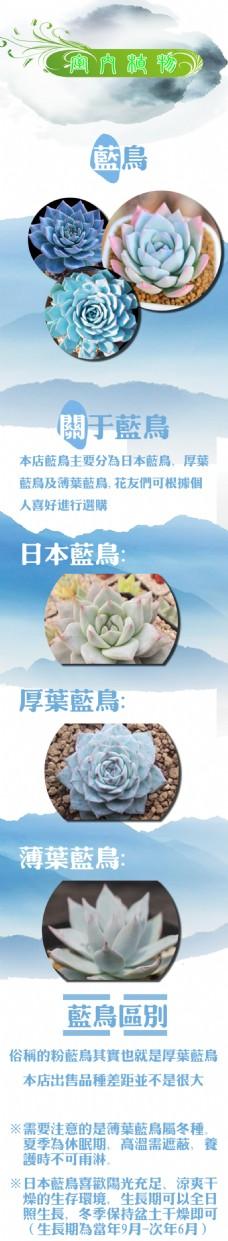 室内植物详情页
