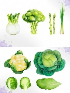 手绘绿色蔬菜