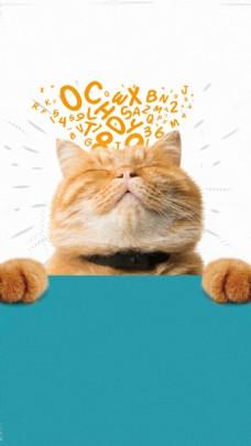可爱猫咪睡觉H5背景素材