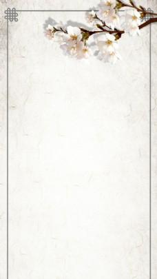 手绘白色花朵H5背景素材