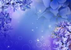 梦幻蓝色时尚花朵背景墙