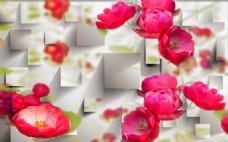 娇滴滴红玫瑰高清大图下载