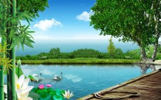 3D高清池塘游鸭荷花背景墙
