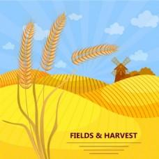 农场小麦矢量素材