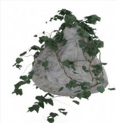 石头带藤精模
