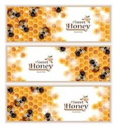 蜂巢蜂蜜矢量设计元素